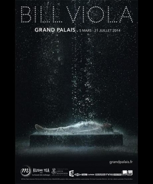 Bill Viola - Grand Palais- Paris